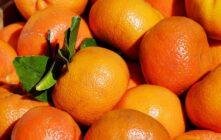 Firmafrugt er populært – og med god grund